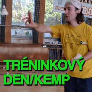 Vedení tréninkového dne či badmintonového kempu